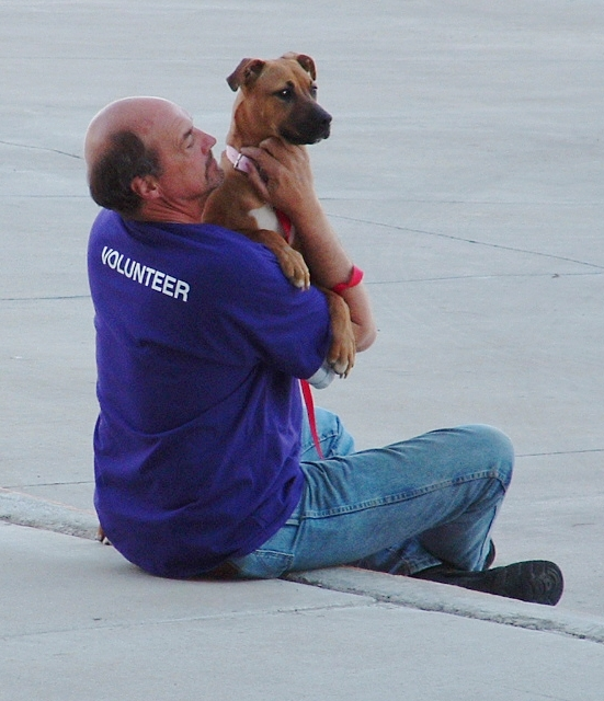 Volunteer Holding a Dog